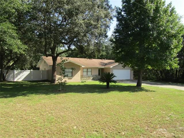 25405 Mardon Circle, Paisley, FL 32767 (MLS #G5046088) :: Vacasa Real Estate