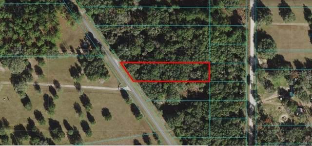 Ne 148 Terrace Road, Fort Mc Coy, FL 32134 (MLS #G5046167) :: Everlane Realty