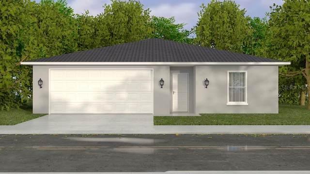 3352 W Hayward Lane, Citrus Springs, FL 34433 (MLS #G5046219) :: Delgado Home Team at Keller Williams