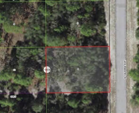 10648 N Caldera Avenue, Citrus Springs, FL 34433 (MLS #G5046253) :: RE/MAX Elite Realty