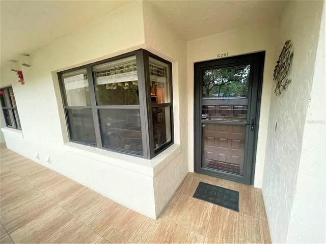 501 W Old Us Highway 441 C-203, Mount Dora, FL 32757 (MLS #G5046255) :: Bob Paulson with Vylla Home