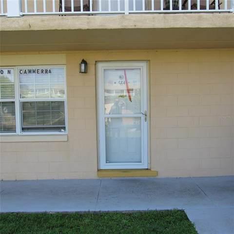 1400 Eudora Road G64, Mount Dora, FL 32757 (MLS #G5046280) :: Zarghami Group