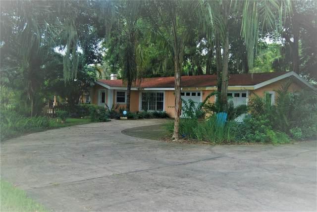 131 E Palmetto Avenue, Howey in the Hills, FL 34737 (MLS #G5046323) :: Zarghami Group