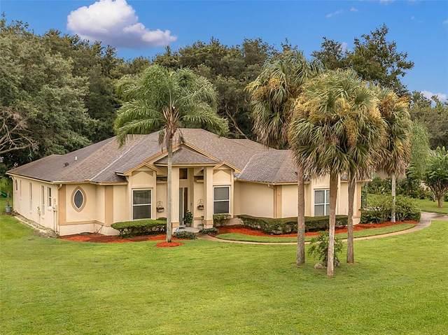 5109 Autumn Ridge Lane, Windermere, FL 34786 (MLS #G5046451) :: The Light Team