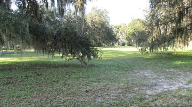 Lake Panasoffkee, FL 33538 :: RE/MAX Elite Realty