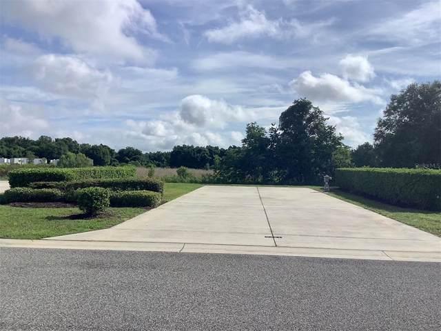 9341 SE 49TH Avenue, Webster, FL 33597 (MLS #G5046478) :: Prestige Home Realty