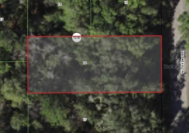 9188 N Tiffin Terrace, Citrus Springs, FL 34434 (MLS #G5046498) :: RE/MAX Elite Realty