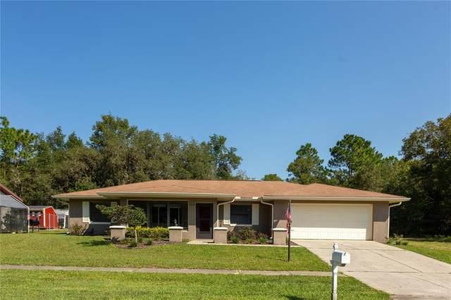 2419 W Eric Drive, Citrus Springs, FL 34434 (MLS #G5046510) :: Delgado Home Team at Keller Williams
