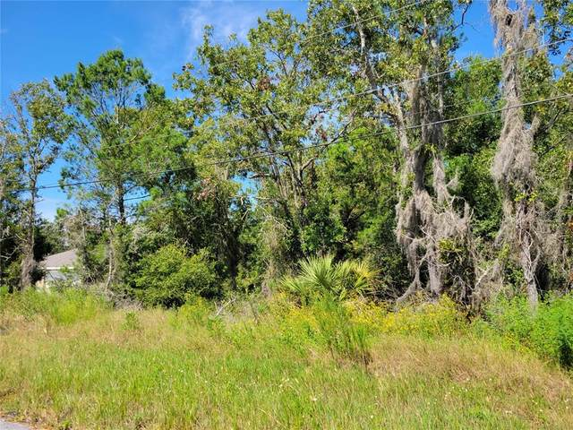 Olive Ct., Ocala, FL 34472 (MLS #G5046639) :: The Hustle and Heart Group