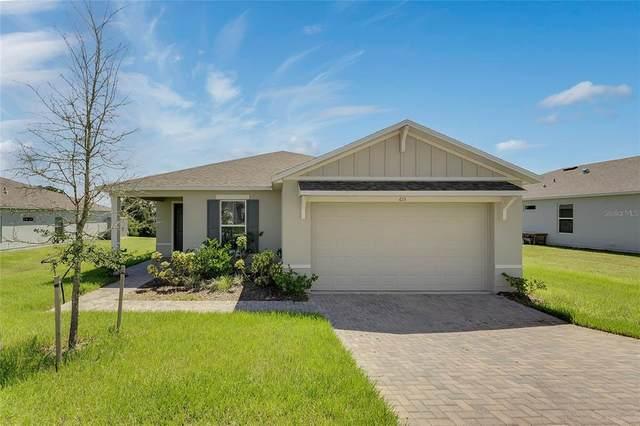 615 Black Eagle Drive, Groveland, FL 34736 (MLS #G5046690) :: Carmena and Associates Realty Group