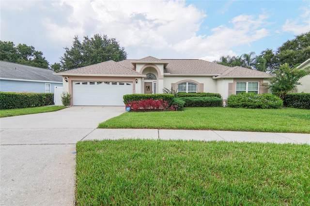 5232 Mill Stream Road, Ocoee, FL 34761 (MLS #G5046758) :: Bustamante Real Estate