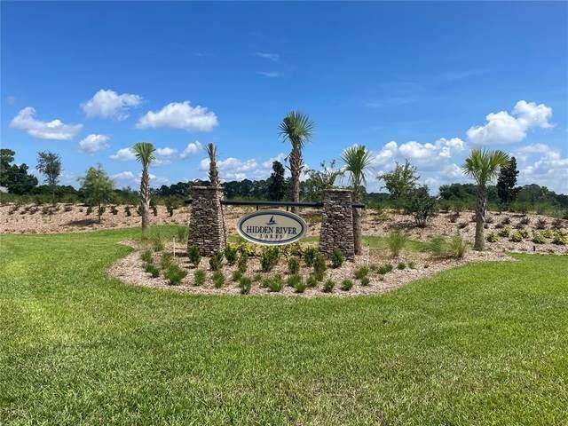 3397 Lake Diane Road, Tavares, FL 32778 (MLS #G5046766) :: Sarasota Gulf Coast Realtors