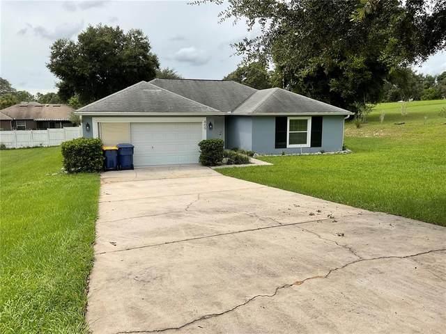 409 N Dixie Drive, Howey in the Hills, FL 34737 (MLS #G5046778) :: GO Realty