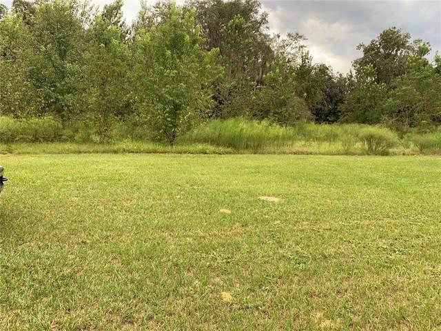 Honeycut Road, Groveland, FL 34736 (MLS #G5046784) :: Stiver Firth International