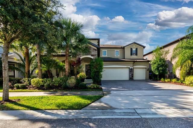 11836 Aldendale Street, Orlando, FL 32836 (MLS #G5046790) :: Your Florida House Team