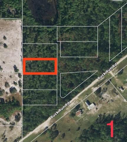 Buck Run Drive, Paisley, FL 32767 (MLS #G5046825) :: Keller Williams Realty Peace River Partners