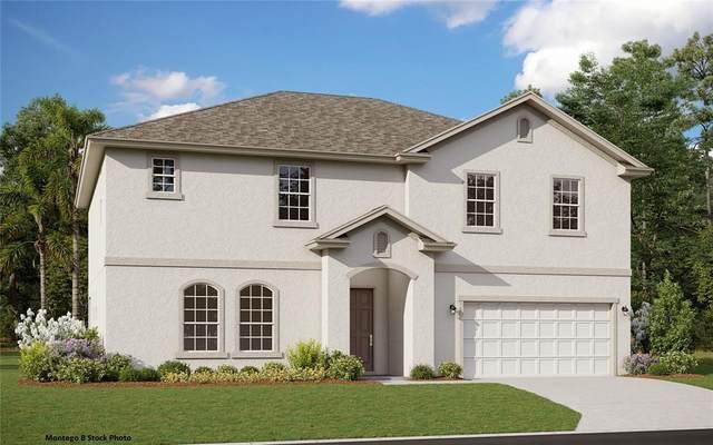524 Avila Place, Howey in the Hills, FL 34737 (MLS #G5046827) :: Zarghami Group