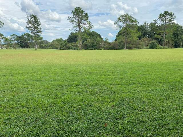 551 Dowling Circle, Lady Lake, FL 32159 (MLS #G5046831) :: Realty Executives