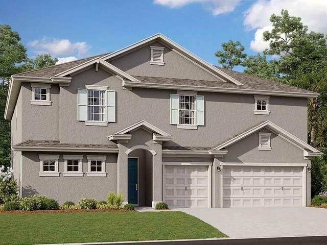 624 Avila Place, Howey in the Hills, FL 34737 (MLS #G5046844) :: Pristine Properties