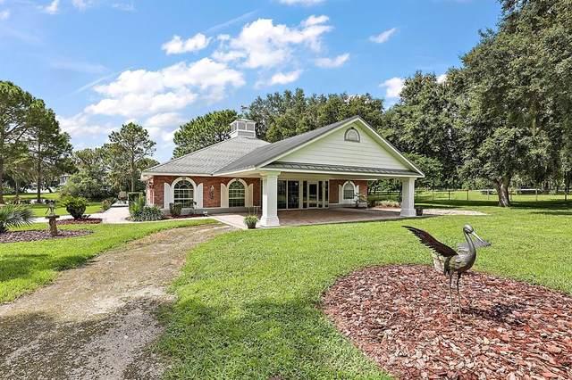 11808 Lizard Lane, Umatilla, FL 32784 (MLS #G5046873) :: Everlane Realty