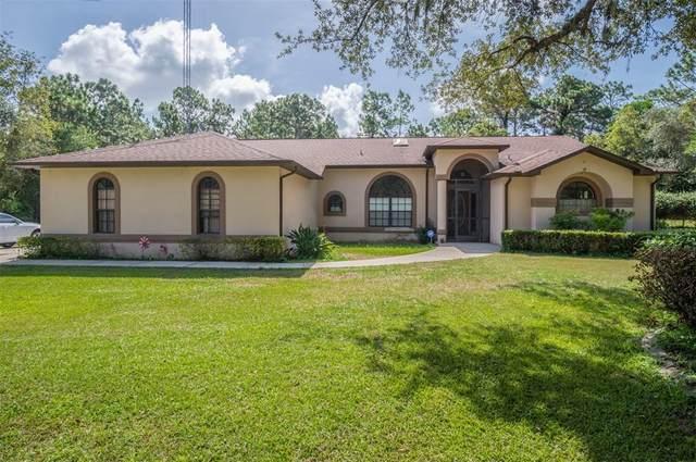 5885 N Rosebark Way, Beverly Hills, FL 34465 (MLS #G5046885) :: Zarghami Group