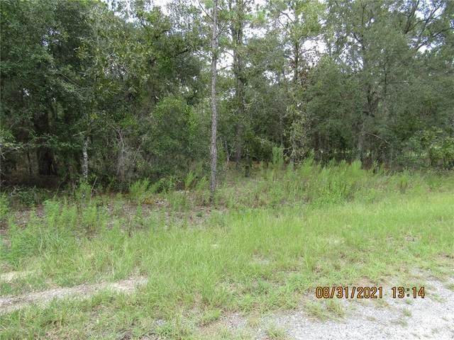 TBD NE 17TH Place, Williston, FL 32696 (MLS #G5046922) :: Vacasa Real Estate