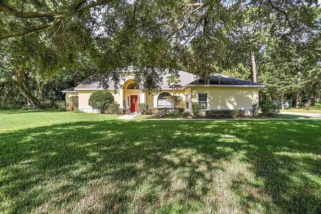 34505 Hammond Lane, Eustis, FL 32736 (MLS #G5046923) :: Your Florida House Team