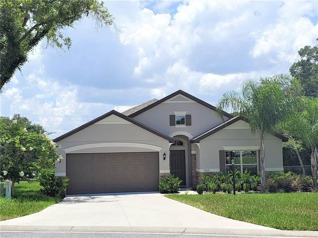 32031 Stone Meadow Court, Sorrento, FL 32776 (MLS #G5047053) :: Vacasa Real Estate