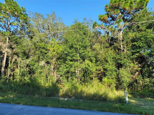 0000 SE 88 Avenue, Summerfield, FL 34491 (MLS #G5047196) :: Everlane Realty