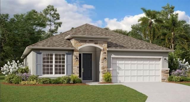 2041 Havasu Falls Drive, Deland, FL 32724 (MLS #G5047293) :: Lockhart & Walseth Team, Realtors