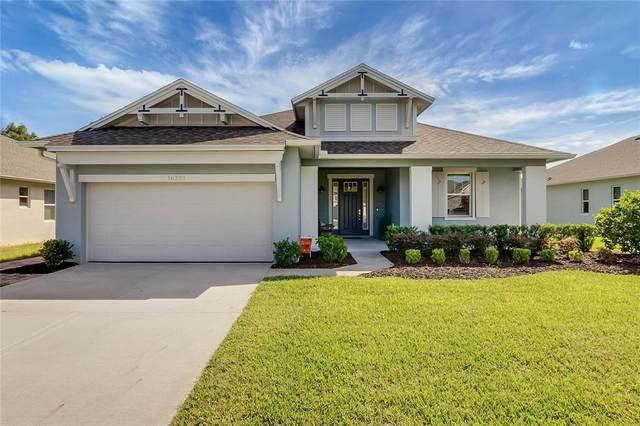 16222 Oak Breeze Court, Clermont, FL 34711 (MLS #G5047372) :: Charles Rutenberg Realty