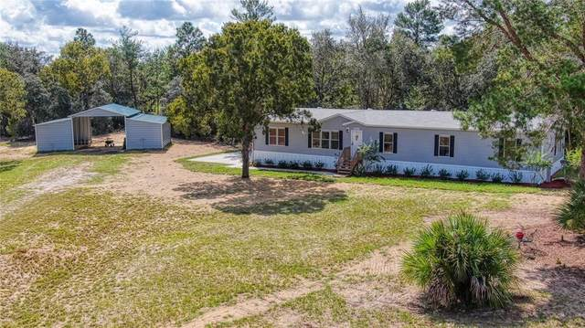 16090 SE 112TH PLACE Road, Ocklawaha, FL 32179 (MLS #G5047646) :: Global Properties Realty & Investments