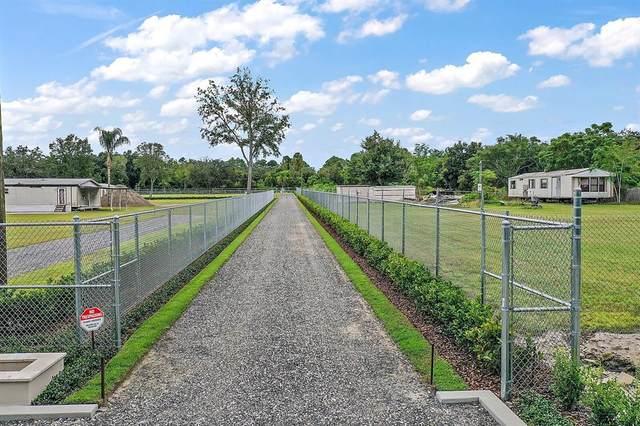 162 Faye Street, Apopka, FL 32712 (MLS #G5047647) :: SunCoast Home Experts
