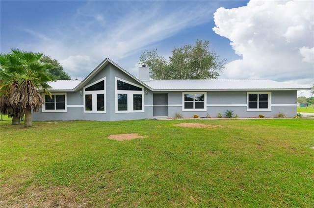 929 SE 130TH Avenue, Webster, FL 33597 (MLS #G5047670) :: Keller Williams Realty Select