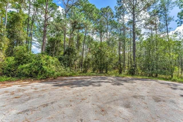 Chinaberry Street, Eustis, FL 32736 (MLS #G5047721) :: Everlane Realty