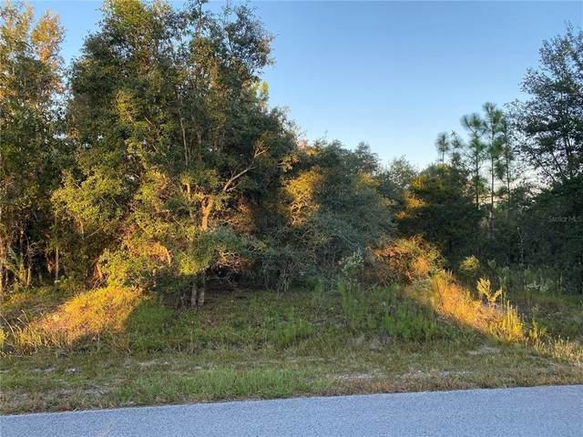 SW Hyacinth Court, Dunnellon, FL 34431 (MLS #G5047778) :: Everlane Realty