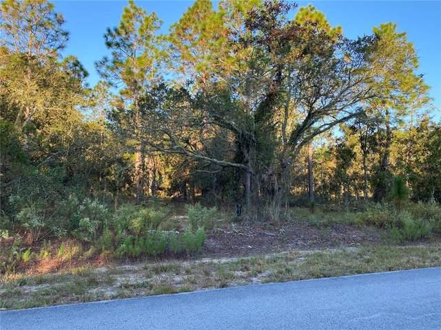 SW Viburnum Road, Dunnellon, FL 34431 (MLS #G5047782) :: Delgado Home Team at Keller Williams