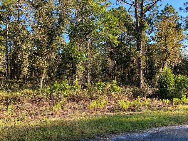 SW Rainelle Road, Dunnellon, FL 34431 (MLS #G5047785) :: Delgado Home Team at Keller Williams