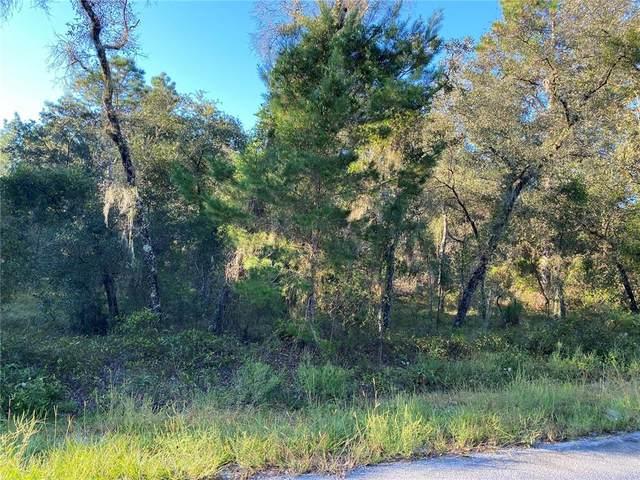 SW Blueberry Lane, Dunnellon, FL 34431 (MLS #G5047786) :: Delgado Home Team at Keller Williams