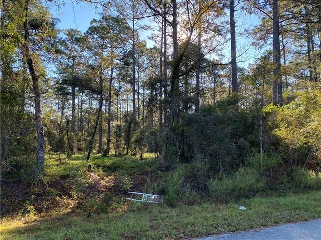 NW Buena Vista, Dunnellon, FL 34431 (MLS #G5047789) :: Delgado Home Team at Keller Williams
