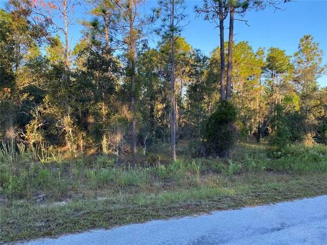 Sunshine Ridge Road, Dunnellon, FL 34431 (MLS #G5047792) :: Delgado Home Team at Keller Williams