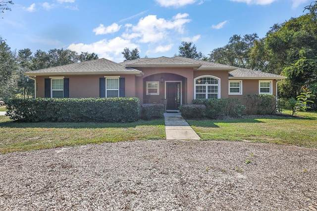 4820 Griffin View Drive, Lady Lake, FL 32159 (MLS #G5047801) :: Charles Rutenberg Realty