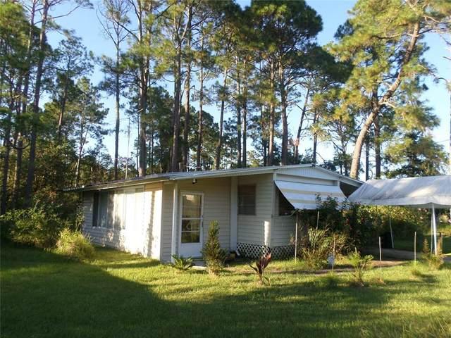 290 Evergreen Terrace, Deland, FL 32724 (MLS #G5047837) :: The Hesse Team
