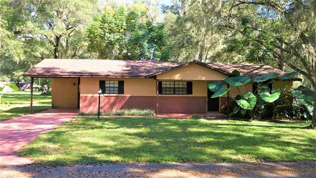 13975 SE 65TH Court, Summerfield, FL 34491 (MLS #G5047871) :: RE/MAX Local Expert