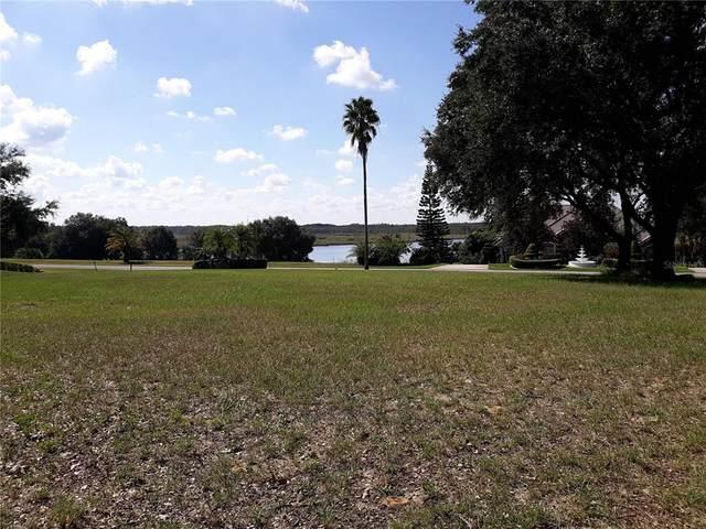 Royal Palm Drive, Groveland, FL 34736 (MLS #G5047894) :: RE/MAX Local Expert