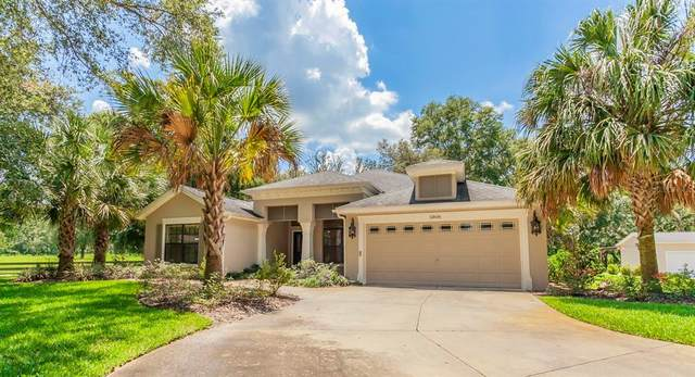 12606 County Road 227, Oxford, FL 34484 (MLS #G5047948) :: Everlane Realty