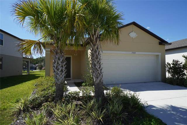 17509 Butterfly Pea Court, Clermont, FL 34714 (MLS #G5047954) :: Bustamante Real Estate