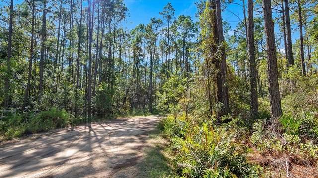 Kijik Trail, Groveland, FL 34736 (MLS #G5048028) :: EXIT King Realty