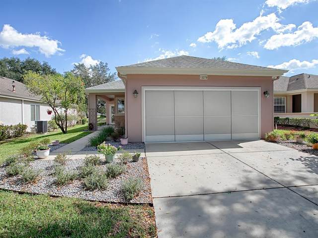 13279 SE 92ND COURT Road, Summerfield, FL 34491 (MLS #G5048076) :: Future Home Realty