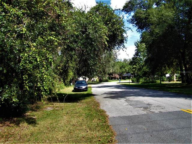 Louisa Ct, Clermont, FL 34711 (MLS #G5048180) :: The Hustle and Heart Group